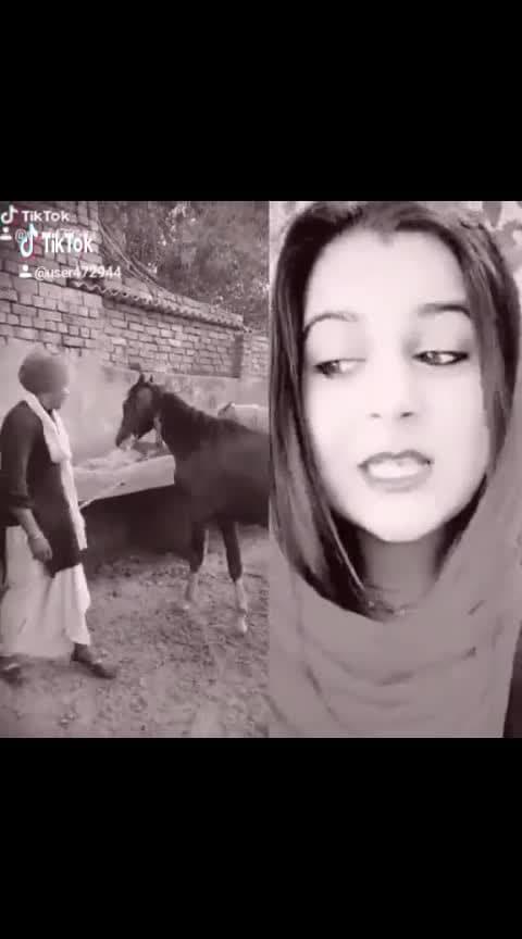 #punjabi-gabru #kaurjattian #desijatt #horse #1millionviews