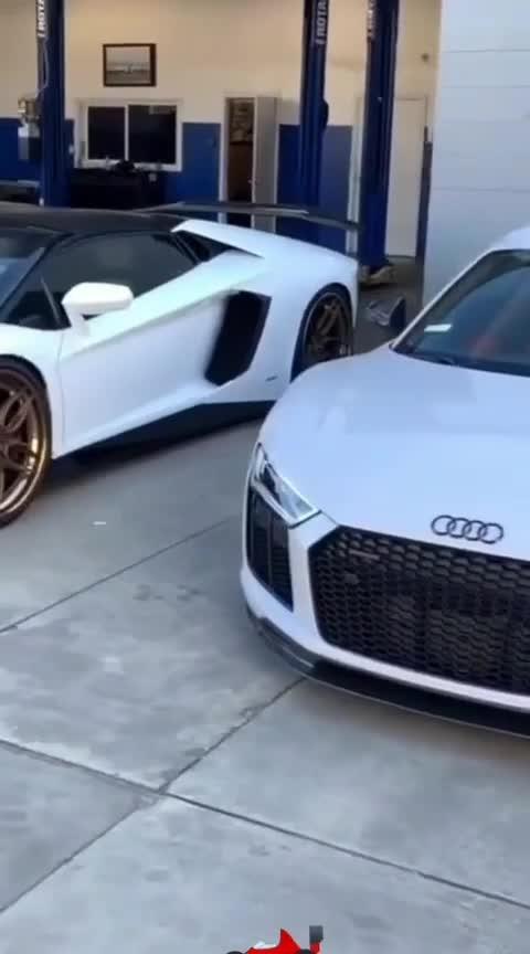 car lovers Lamborghini hot video  #lamborghini #oode #roserolls #selfcare #hotcar #stylish-car-lamborghini #love for cars #carshoot