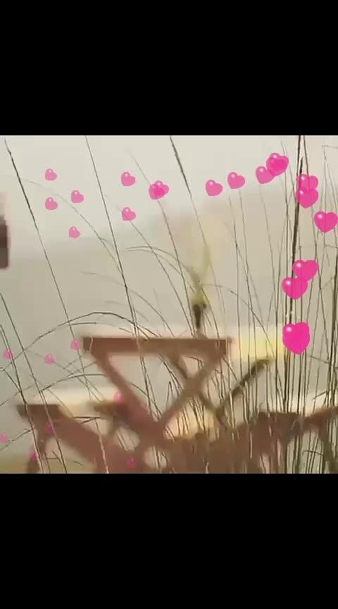 #love_song#my_fav_song#love_forever#love_goals#love#loveislove#lovefeeling#love----love----love...💟💟💟