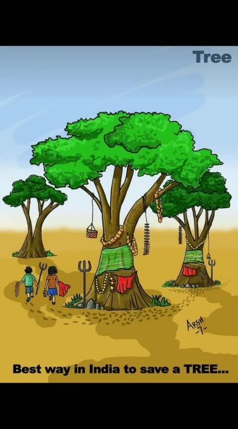 #tree #treelover