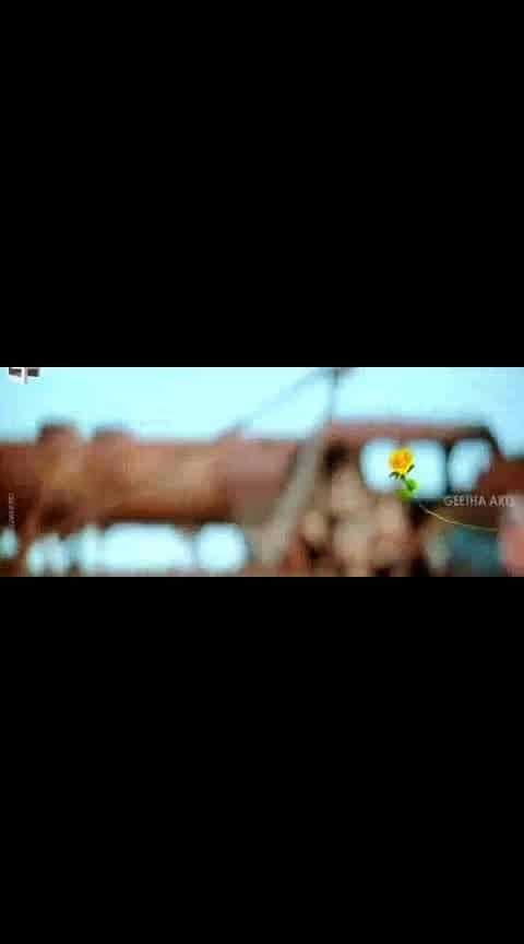 #innalu #alluarjun #rakulpreetsingh #sarinodu #lovesong #videosong #whatsapp-status