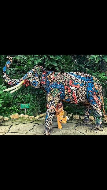 I'm just going to go live life. I'm going to go enjoy life. I have nothing left to hide. I am kind of a free person, a free soul. - - - - - - - #safari #safariworld #safariworldbangkok #safariworldthailand #thailand #free #freedom #freeliving #livelife #livelifetothefullest #lifestyleblogger #lifequotes #freedom #freeway #enjoylife #enjoy #enjoyyourself #enjoyjourney #enjoythejourney#joy #joyfolie #happiness #travelgram #travelblogger #traveling