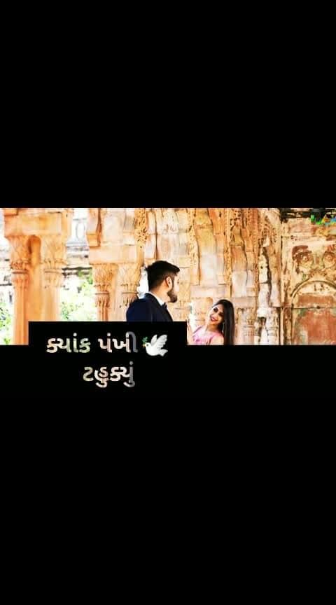 #gujarati_fullscreen_stetus #lovestatus #whatsaapstatus