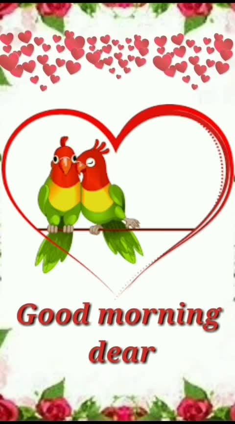 roposo good morning#roposodaily #roposoness #roposo-rising-star-rapsong-roposo #roposogoodmorning #roposoday @radha2019m