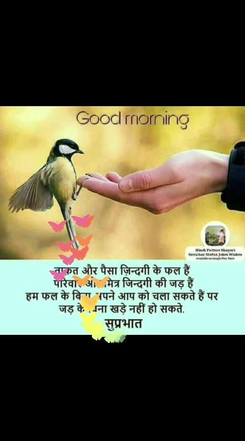 Happy sunday! #goodmorning #dailywisheschannel #roposo-dailywishes #goodmorningpost #sunday #haveagoodday