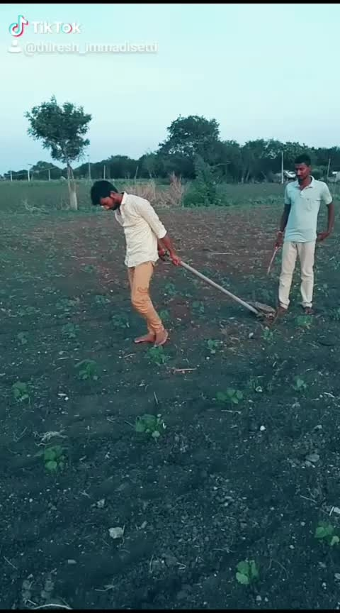#pain-of-farmer #royal-in-field#proud-to-be-farmer #roposo-wow-indian