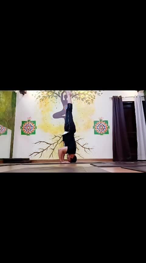 5 Yoga Poses For Anti-aging | Sadhak Anshit Yoga Classes  #yogaflow  #vinyasaflow  #workoutmotivation  #workout  #yoga  #flow #yogaflow #yogalover  #fitness  #fitnessgoals  #fitnessinspiration  #fitnessaddict  #yoga #yogalove  #yogaday  #yogachallenge  #yogaeverydamnday  #yogainstructor  #yogapose  #yogafitness  #yogapose  #yogateacher  #yogapractice  #yogafitness  #yogacrazy  #yogaflow  #yogamotivation  #yogatips  #yogaclass  #yogaathome  #yogajourney  #yoga #tending  #fitnessaddict #fitnessgoals #fitnessblogger  #fitnessinspiration #mysoreyoga  #yogaflow #armbalance  #armbalancing  #indian  #kanpur