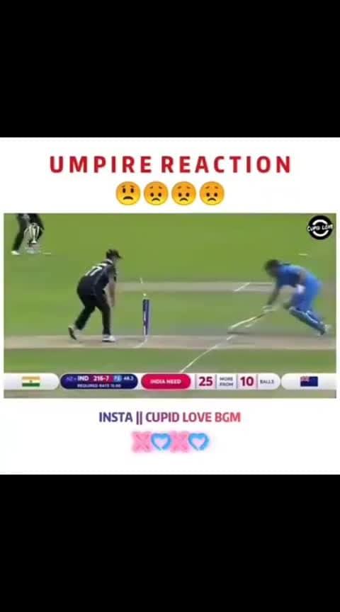 umpire reaction....
