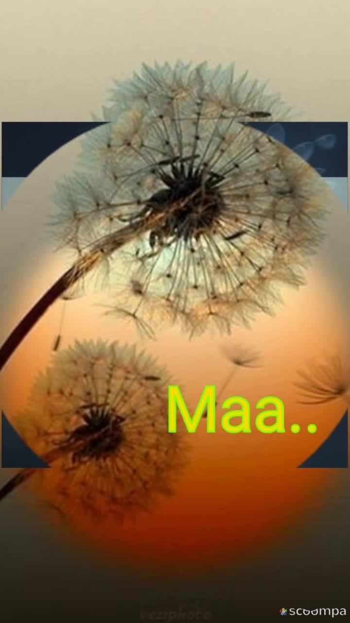 on req @anjum94 merii diduuuu😘😘😘😘😘😘😘😘❤❤❤❤❤❤❤❤ @duggukittu 🤗🤗🤗🍫🍫🍫😊😊 @heartbroke01 🤗🤗🍫🍫🍫🍫😊  #i-love-u-mom #mom #motherlove #bestpost #specialpost #roposopost #roposoviews #roposoviewers #roposong #roposomusic #roposovideo #roposoeffect #roposofeed #-----roposo #roposocontests---------- #roposofollowme 🤗🤗🤗🤗🍫🍫🍫🍫🍫🍫🍫🍫😊