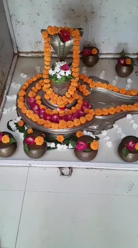 Om Namaha Shivay .🙏 #mahadev #shiv #omnamahshivaya #icc #bhakti #roposo-bhakti