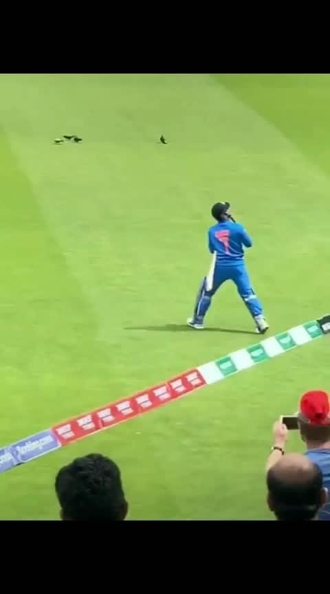 #mahi #msdhoni7 #king #cricketer