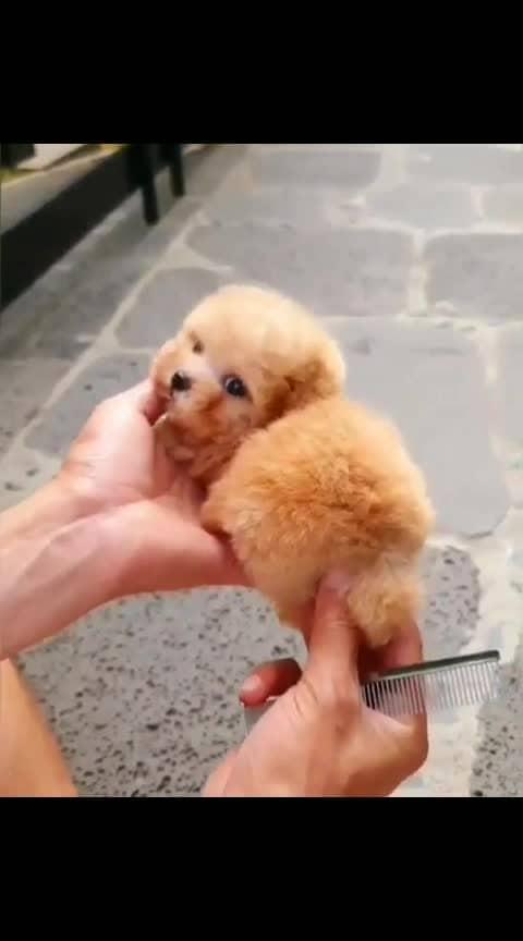 cutiee....