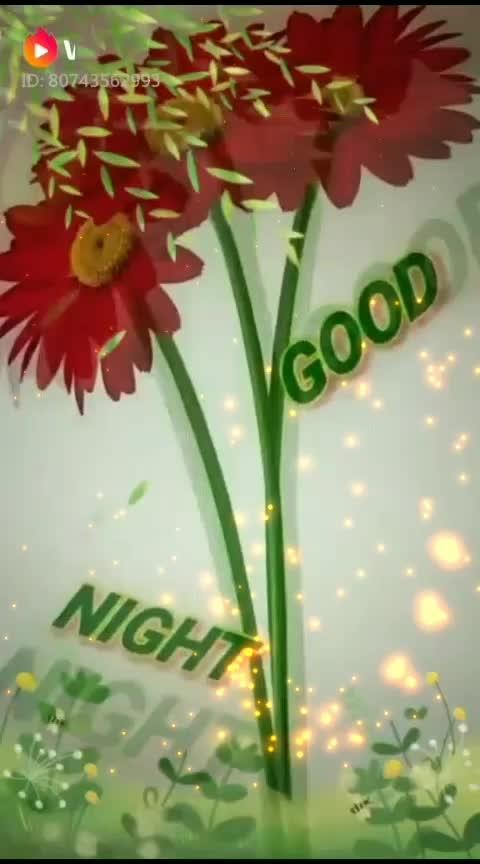 🌷🌷 good night 🌷🌷----- 🎄🎁 #deepveer  #thetimeline 🎁 🎄 🎆🎆🎇@roposocontests    🎇🎆🎆#roposostars    #roposo-fashiondiaries    #roposo-makeupandfashiondiaries   #ropo-love  #roposo-good    #roposo-dance  #roposobeauty   #roposo-beats   #roposo-family   #roposo-hahahaha    #roposo-masti   #roposo-morning   #roposostar    #wow       #tranding     #roposo     #feed     #ropo-beauty     #dance     #risingstar       #roposo-style       #weeklyhighlights       #beats       #goodmorning     #status