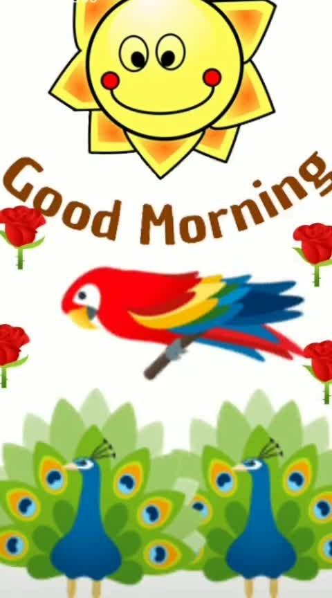 Good morning 💯❣Just follow me❣ @roposocontesta #roposostar #roposostars #tranding #roposo #feed #ropo-beauty #dance #risingstar #roposo-style #beats #good morning #status #love-status-roposo-beats...less
