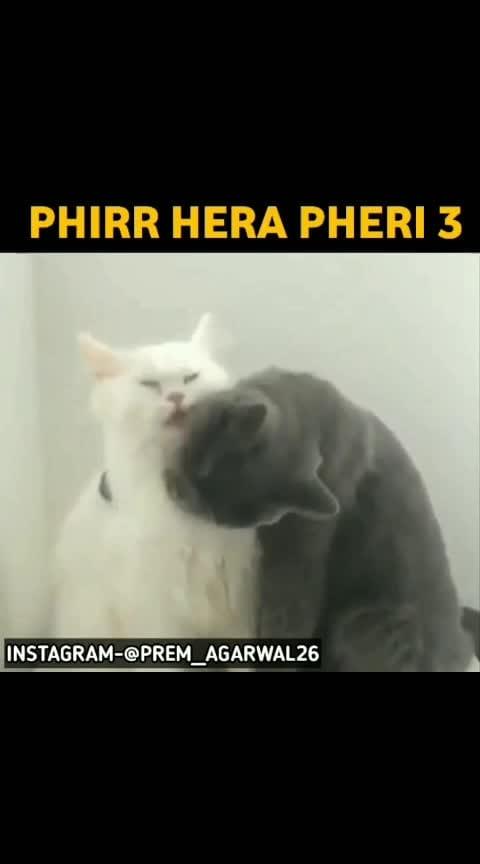 Phirr Hera Pheri 3🤣 #nonvegjokeschannel #nonvegjokes #hahatvchannel #hahatv #risingstar #roposorisingstar #roposostar #premagarwal #premkumar #hckivines #memes #scary #animals #funnyvideos #comedian