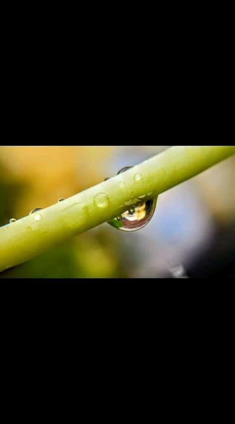 #monsoon #photography