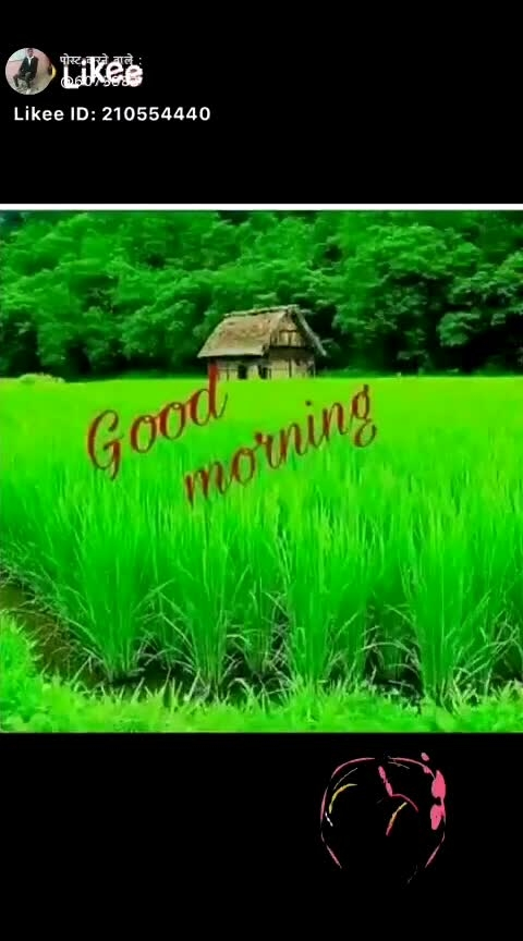 please friend follow me I follow back you all  good morning everyone my friends