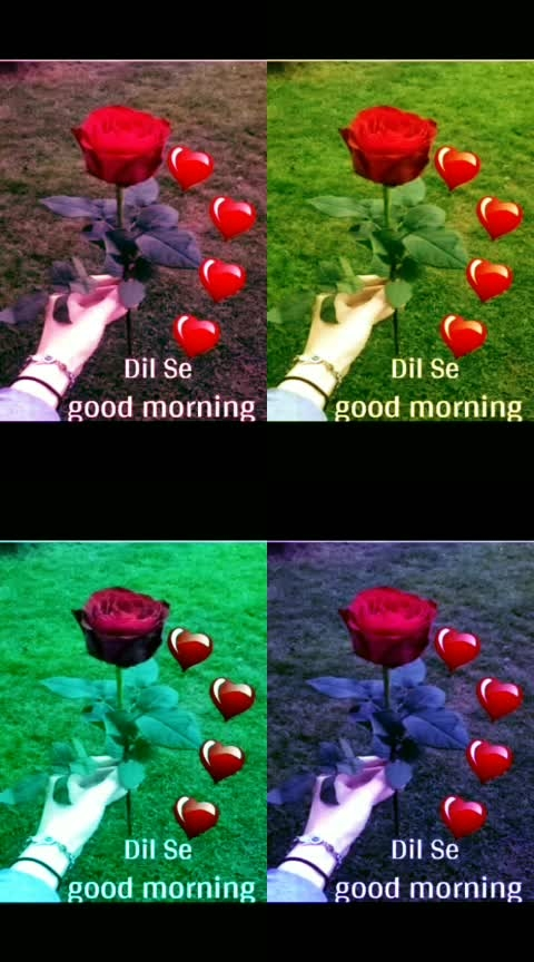 #love------stetust------videos-----lesss