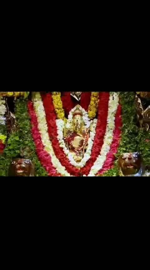 #bonalu #festival #goddess #videosong #bhakti #whatsapp-status