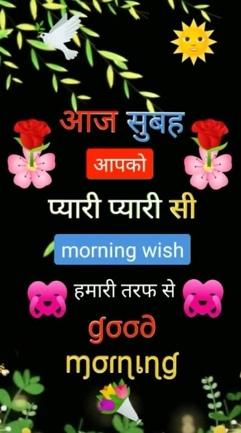 🕉🕉🕉🍀🌲🌲Good morning 🍀🍀💓❤❤💘🌾🍀🍀🌻🌻🌵🌵🌿🌾🌾Have a nice day💘💘❤💓💓🌻🍀 @roposocontests                                                                                                                    #roposocontest                                                                                                                                                                             #nextrisingstar   # • • 🌅 #goodmorning #good_morning #toptags #morning #mornings #goodmorningpost #beautiful     #roposo-goodmoring  #goodmorningworld                                                                                                                               #ropostyle                                                                                                                 #ropo-love                                                                                       #very-beautiful                                 #ropo-beauty                                                            #roposostar                                                                                                                                                                                                #tranding                                                                                                                                         😉😀🔝🕎🕎🌵💓🌵🌵