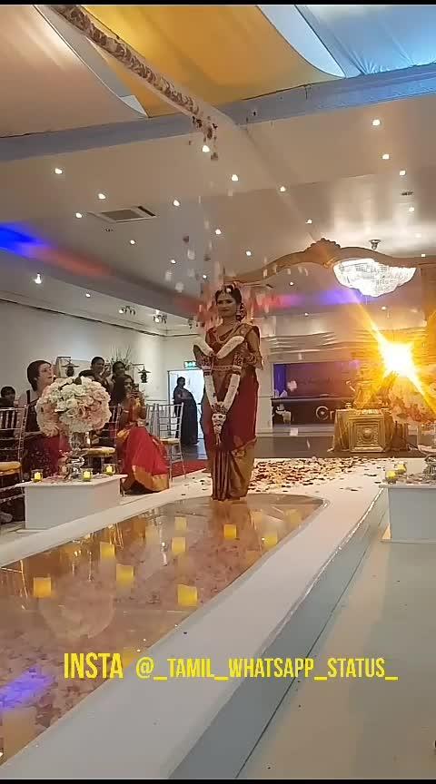 #wedding  #tamilvideos #beautifulbabe