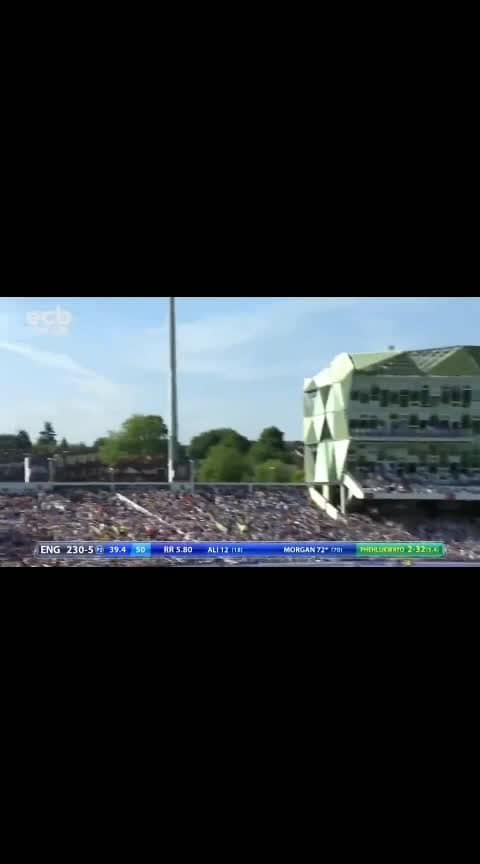 #eoinmorgan #cricket