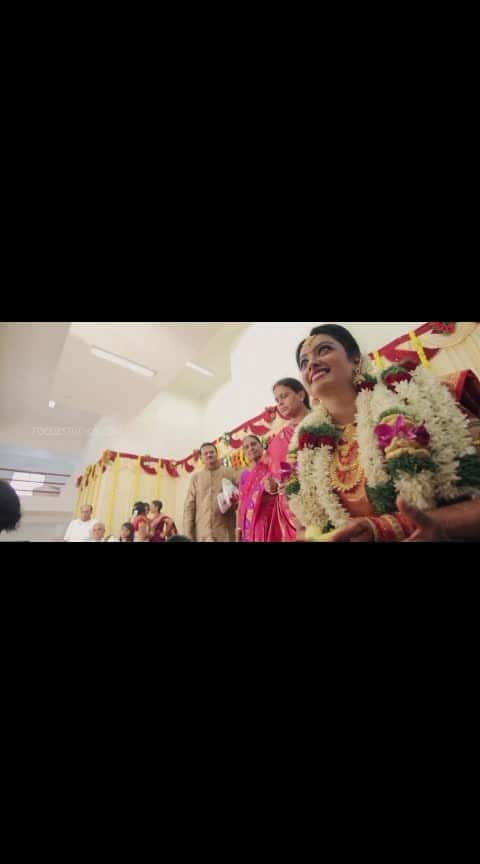 #brahminmarriage #nishavenkatraman #tamilbrahmin #dreammarriage #beautifulmarriage #beautifulcouple #ganeshvenkatraman #mydream