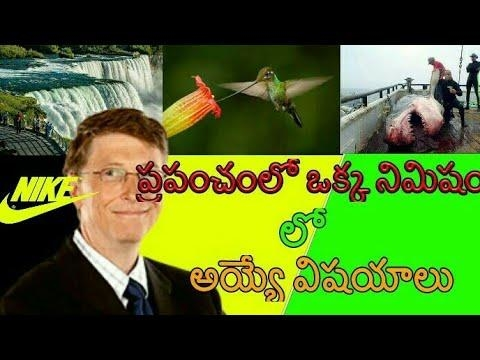 What happens in the world in 1 minute in telugu||what happens in one minute in telugu