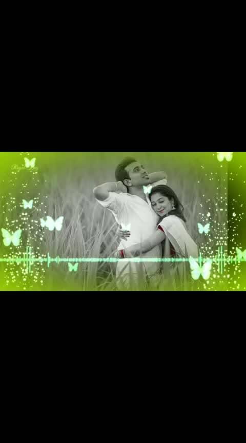#tamil_whatshapp_status #Royal_King #Thozha Thozha