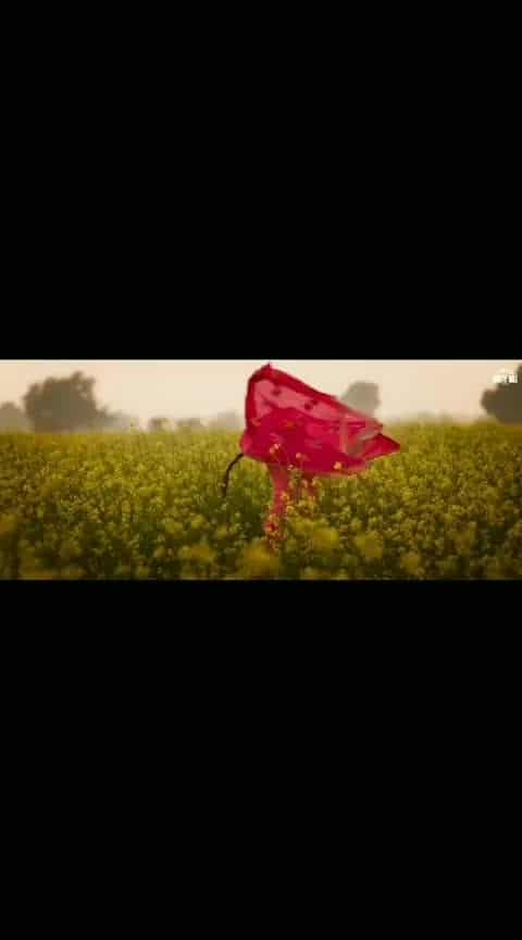 #saakk #mandytakhar #mandy #mandythakar #punjabi #punjabimusic #punjabimusicvideo #punjabimodel #punjabimovie #punjabimunsic #punjabimodels #punjabimemes #punjabimunda