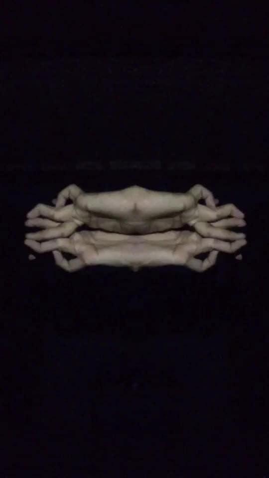 Finger Reflection.👀