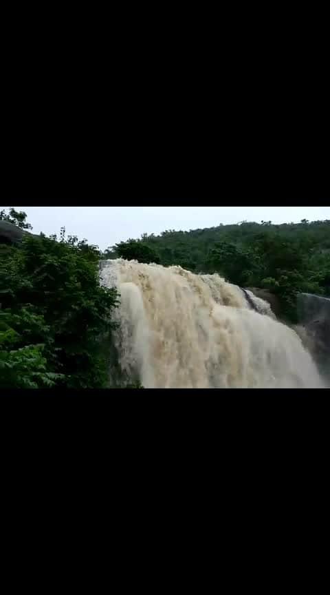 #natureshots #nature_lovers #naturevideo