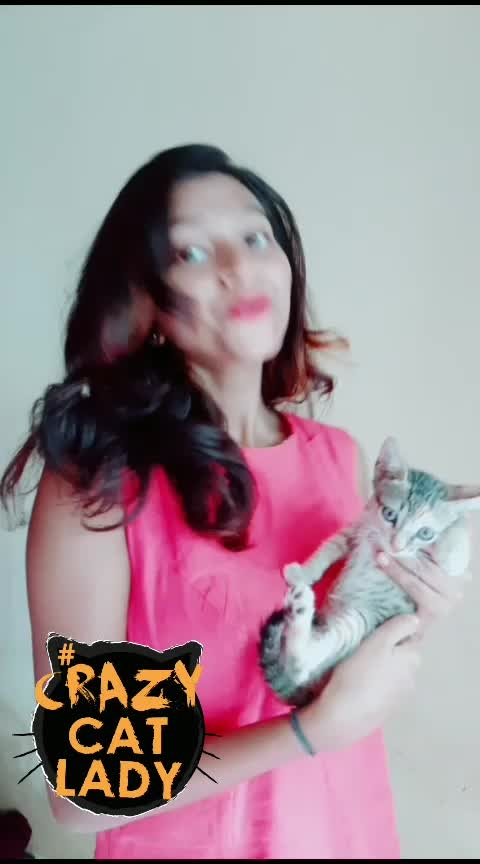 are u a cat person?#cats #cat #catsofroposo #catstagram #roposostar #roposostars #roposostarchannel #beats #beatschannel #beatstv #roposobeats#risingstar #risingstars #risingstaronroposo #risingstarschannel #foryou #foryoupage #foryoutv #roposostar #roposostarchannel