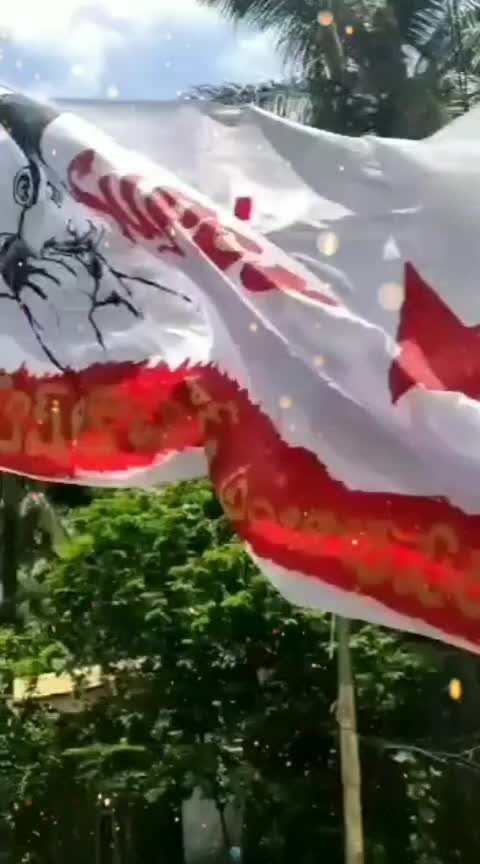 #ambajipeta Dhfms konaseema