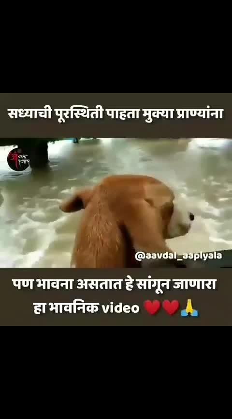#roposomarathi