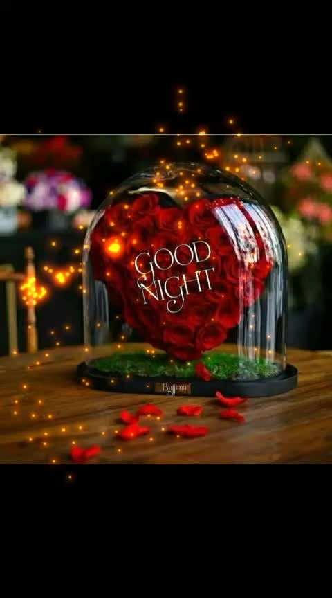 #good--night--my--all-roposo--friends