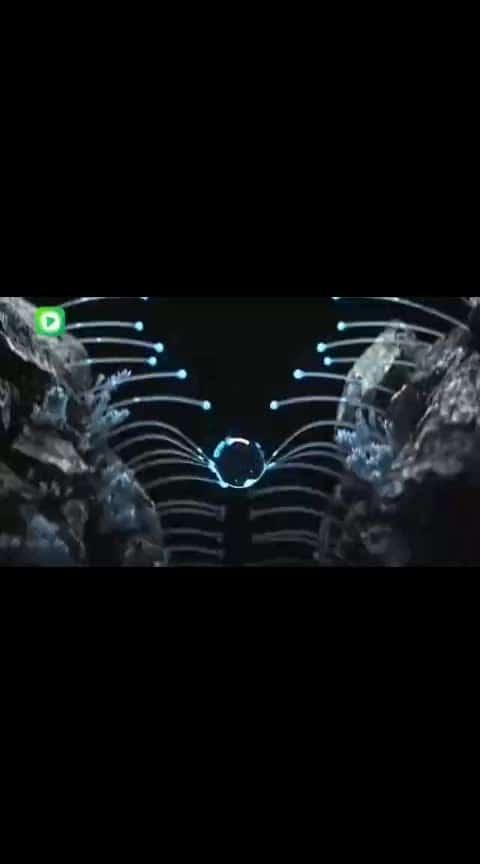 #amazingvideo