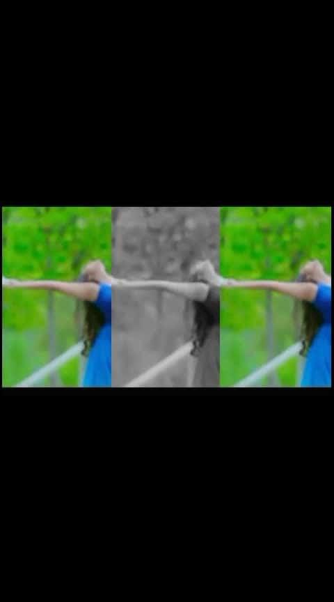 #southmovie #videoclip