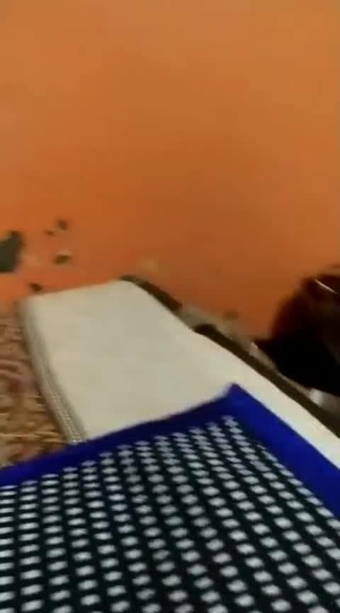 Bhai bhen 😍❤️#roposocomedyvideo #cute #mybabies
