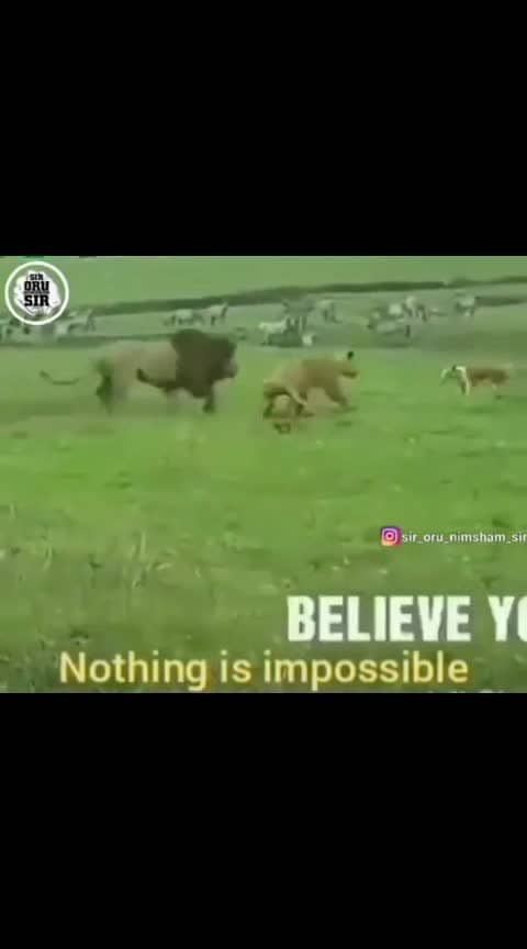belive yourself