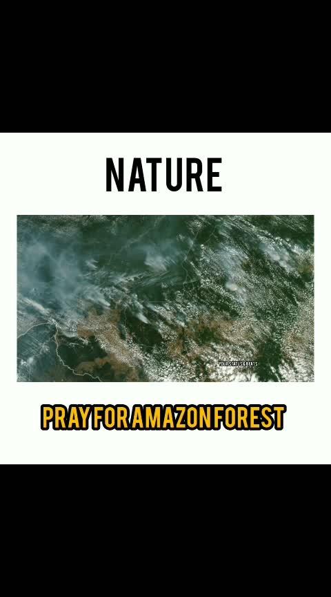 #save_amazon rainforest..