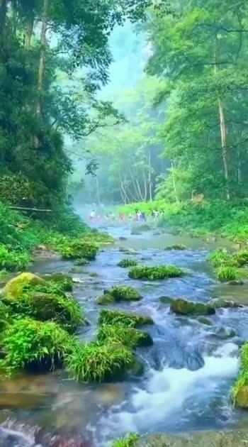 #nature #nature #naturepgotography