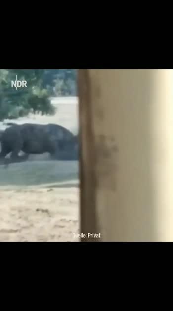 apun se panga mat lena🤣😂🤣😂🤣#india #funnyvideo #animalflow