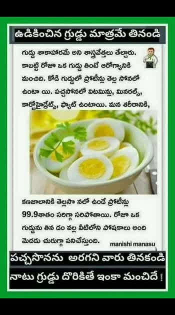 Egg Benefits
