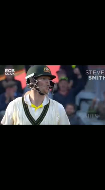 Ashes 4th test day4 highlights