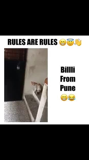 rules na rules than