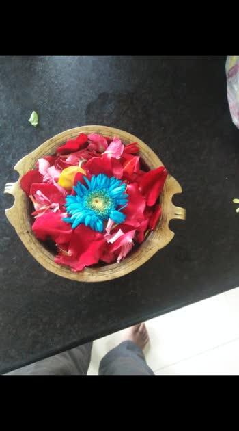 #flowers # #flowers #