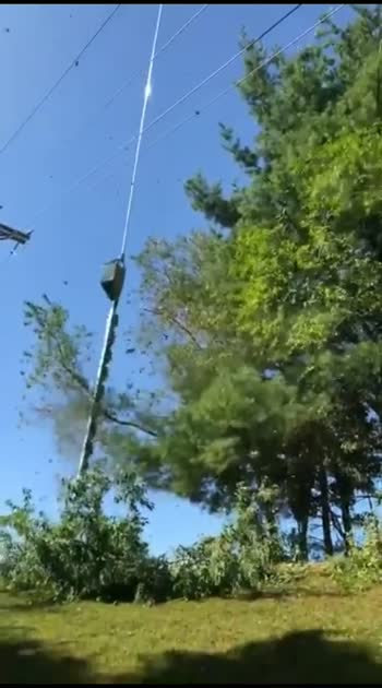 electricity board cutting tree branches via helicopter 🙂🙂🙂