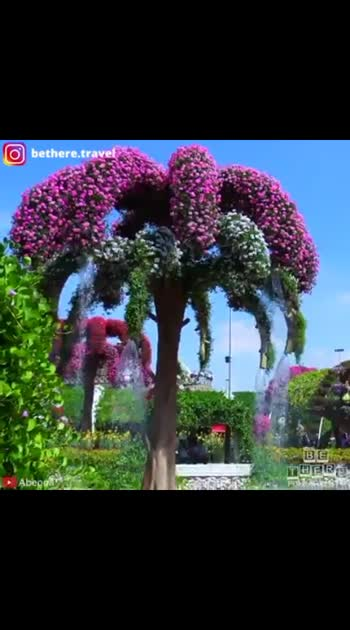 #Dubai Miracle Garden🌷🏵️🌳.😍Staytuned for part2😍