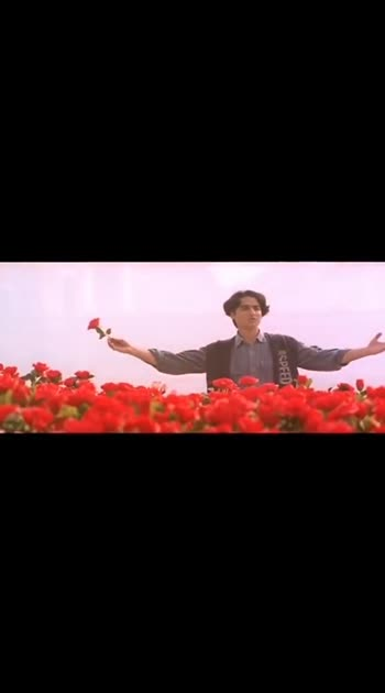 #roja_roja #valentinesday #song #sonalibendre #superhit_song #sonalisongs #tollywoodsong